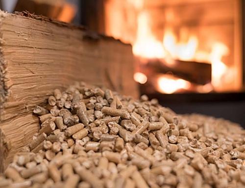 Biomasa drzewna – sojusznik w walce ze smogiem i zmianami klimatu